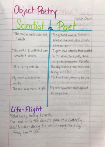 Thinking Like a Poet vs. a Scientist